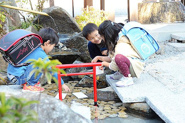 白鷺神社の水みくじを水に浮かべている子どもたち